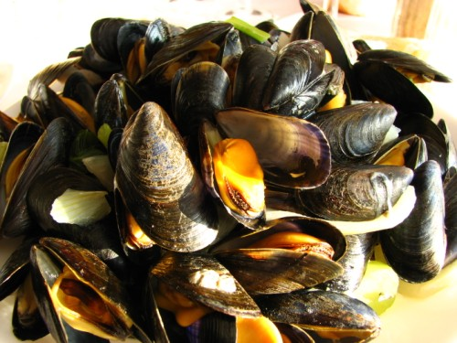 An indecent quantity of mussels